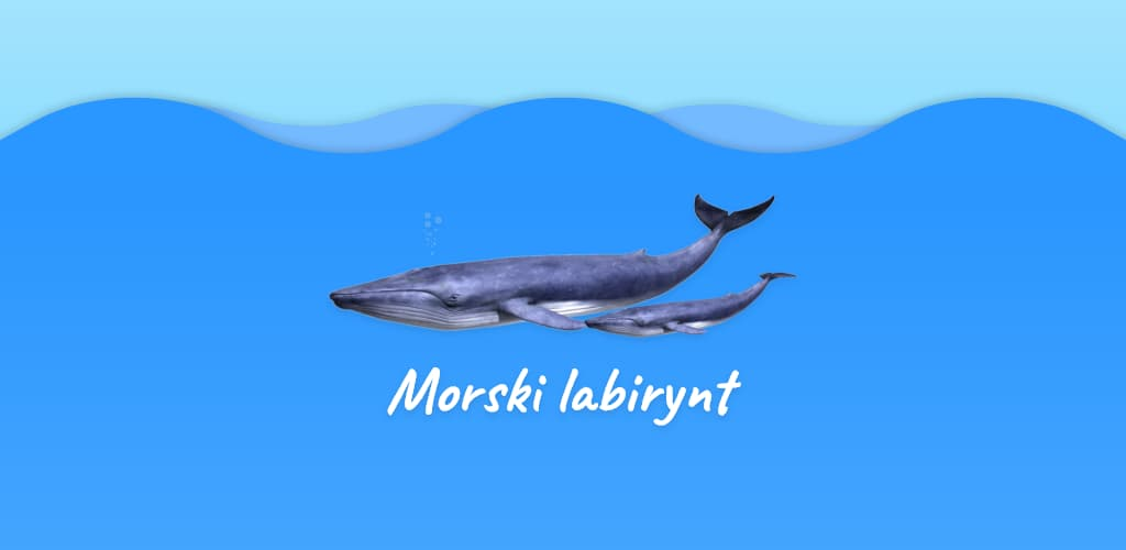 Gra AR Morski Labirynt